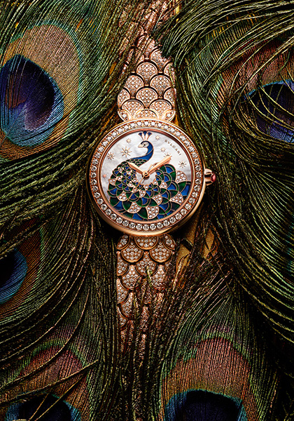 Diva's Dream Peacock