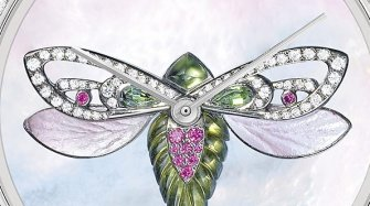 Cicada Trends and style