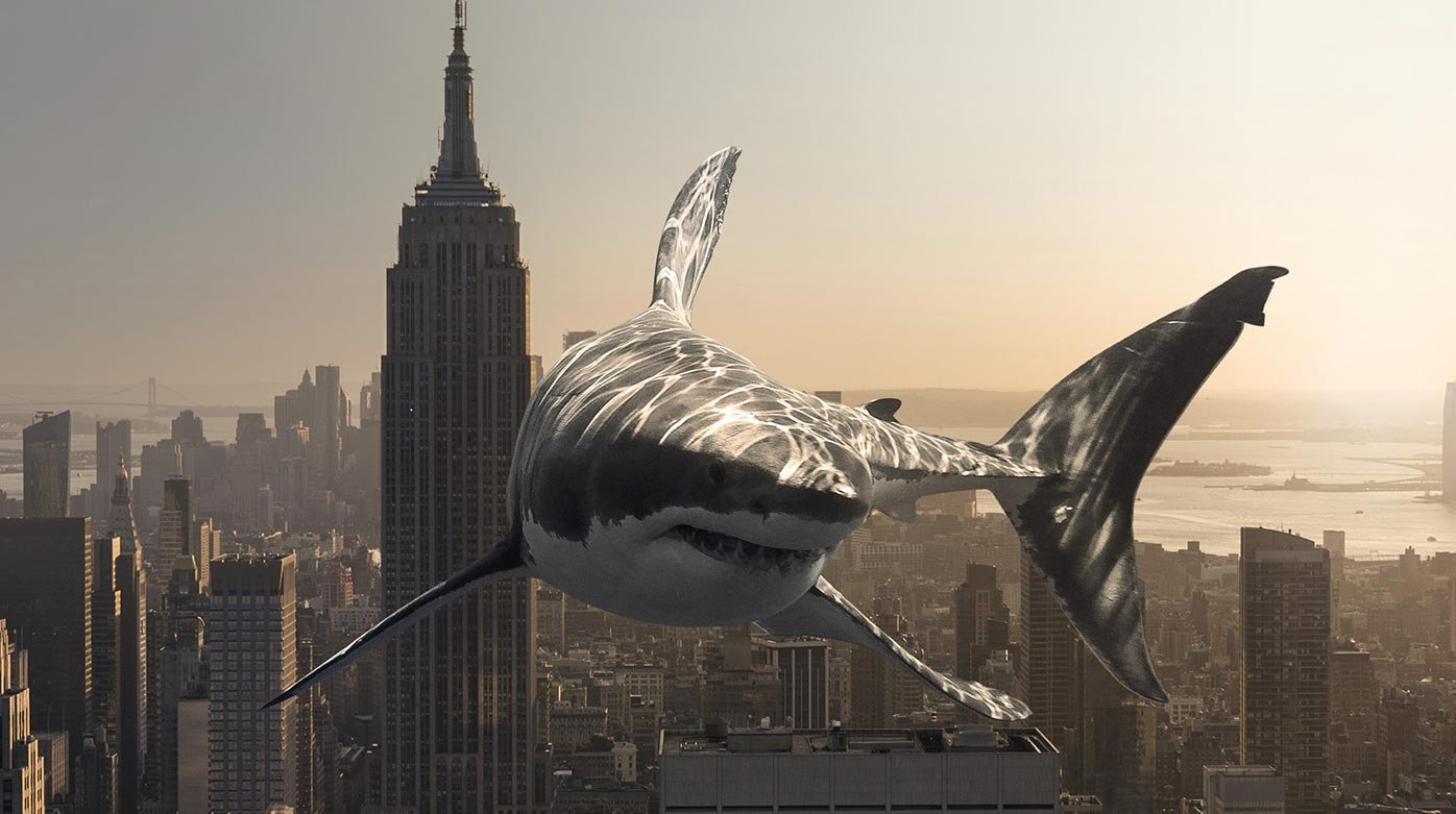 Ulysse Nardin - #FREAKMEOUT : a shark in the city